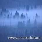 Bayerischer Wald - Blick vom Rachel