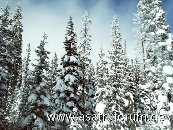 Wintertag im Skigebiet