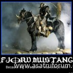 Fjord Mustang