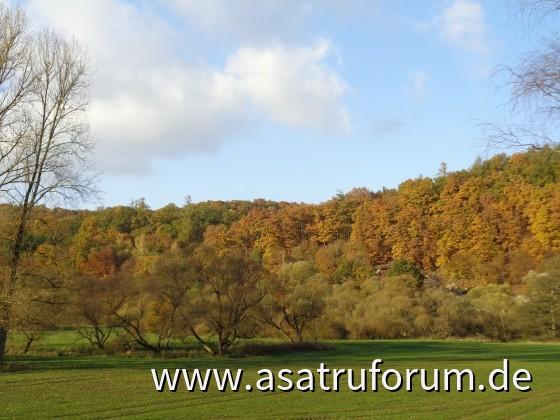 goldener Oktober in Peterslahr