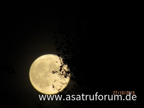 Mondaufgang im Osten