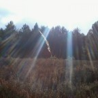 Erste Sonnenstrahlen des Jahres